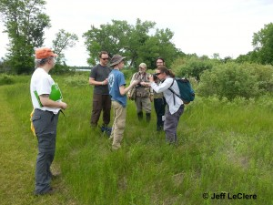 Volunteers documenting and photographing herps in the field.